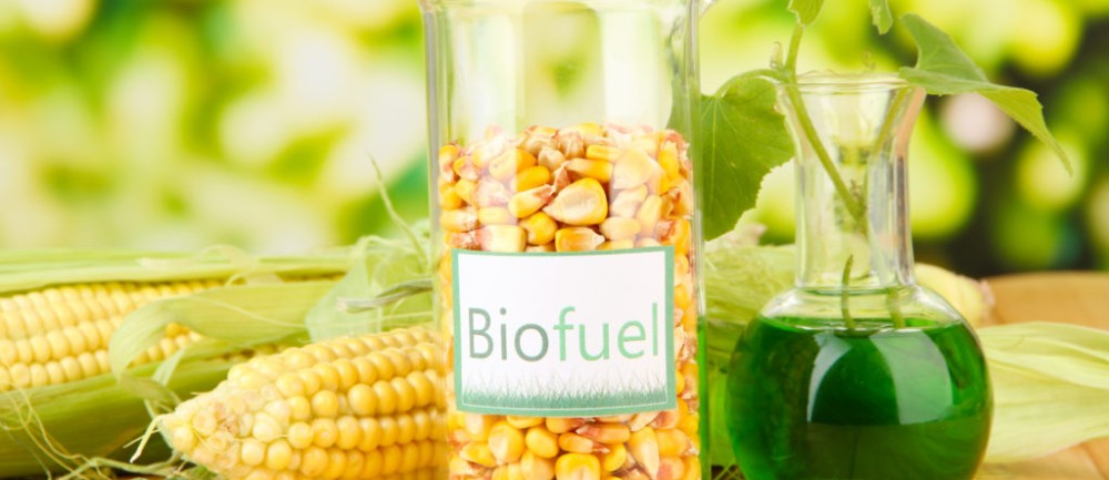 Corn Growers, Ethanol Supporters Again Challenge EPA's Flawed Testing and Modeling